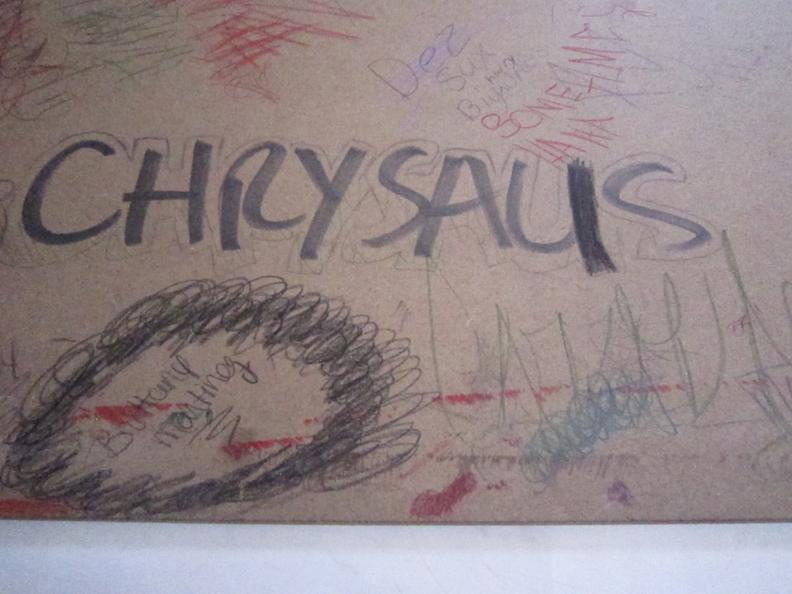 chrsalis1