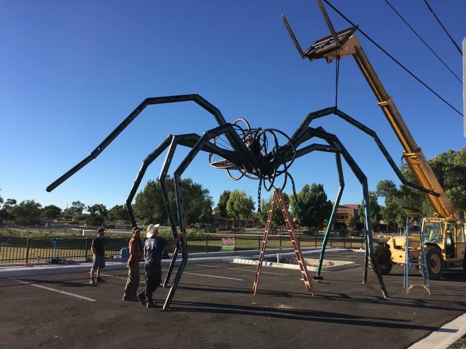 tarantula going up